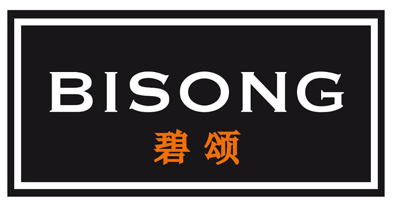 碧斯隆工艺品(深圳)有限公司的企业标志